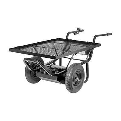 Electric Powered Cart