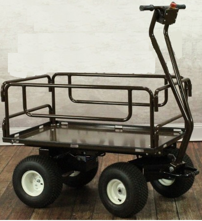 outdoor motorized cart with side rails removable