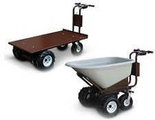 Electric Cart Category