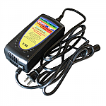 Charger For Power-X-Change Extended Battery For Ace Carts